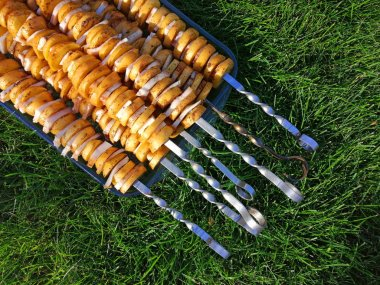 skewer with raw potatoes and fat, on a transparent tray on the grass