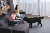 Fotografie high angle view of two young female friends with black retriever at home