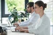 Fotografie boční pohled na koncentrované mladých manažerů společně s notebooky v kanceláři