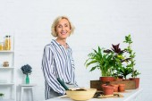 Photo happy senior woman smiling at camera while cultivating potted plants at home