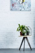 potted plants in front of brick wall with painting