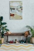 různé boty pod dřevěné lavice v chodbě doma, malba na zdi