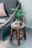 cup of coffee and potted plant on wooden chair in living room