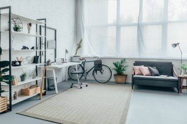 interior of living room with bicycle, table, shelves and sofa