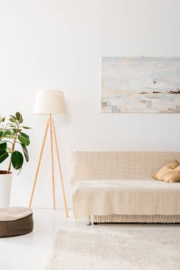 interior of modern living room with lamp, plant, picture and sofa