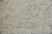 Fotografie Detailní pohled šedi zvětralé betonové zdi textury