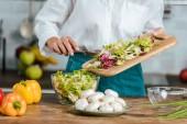 Fotografie beschnitten, Aufnahme Frau machen gesunde Salat in Küche