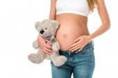 cropped view of pregnant woman holding teddy bear isolated on white
