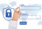 Fotografie oříznuté záběr podnikatelka na kybernetické bezpečnostní cedulka izolované na bílém