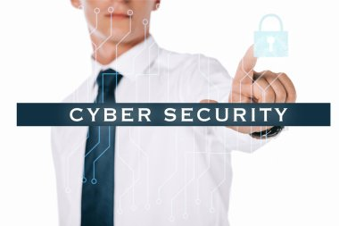 Partial view of businessman pointing at cyber security sign isolated on white stock vector
