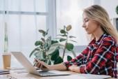 Fotografie Seitenansicht einer Geschäftsfrau mit Smartphone am Arbeitsplatz im Büro