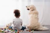 Zadní pohled na malé dítě v bílých tričkách s happy dog obklopen hračka kostky