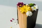 zavřete otevřené retro knihy barevné květy