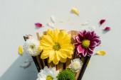 pohled shora retro knihy s jasně barevné květy a lístky