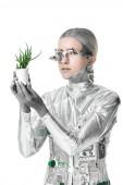 stříbrný robot drží v květináči a při pohledu na fotoaparát izolovaných na bílém, budoucí technologický koncept
