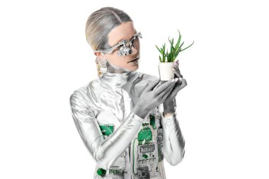 silver robot looking at potted plant isolated on white, future technology concept