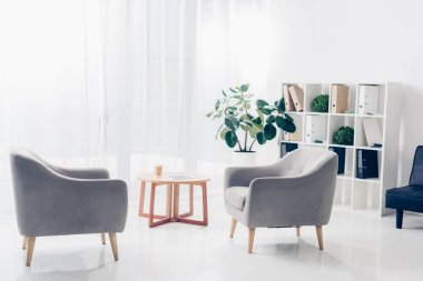 interior of light modern business office with two armchairs, shelves, plants and small wooden table on tulle background