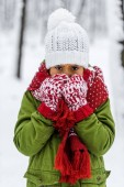 Fotografie frozen african american child in knitted hat, mittens and scarf looking at camera in winter park