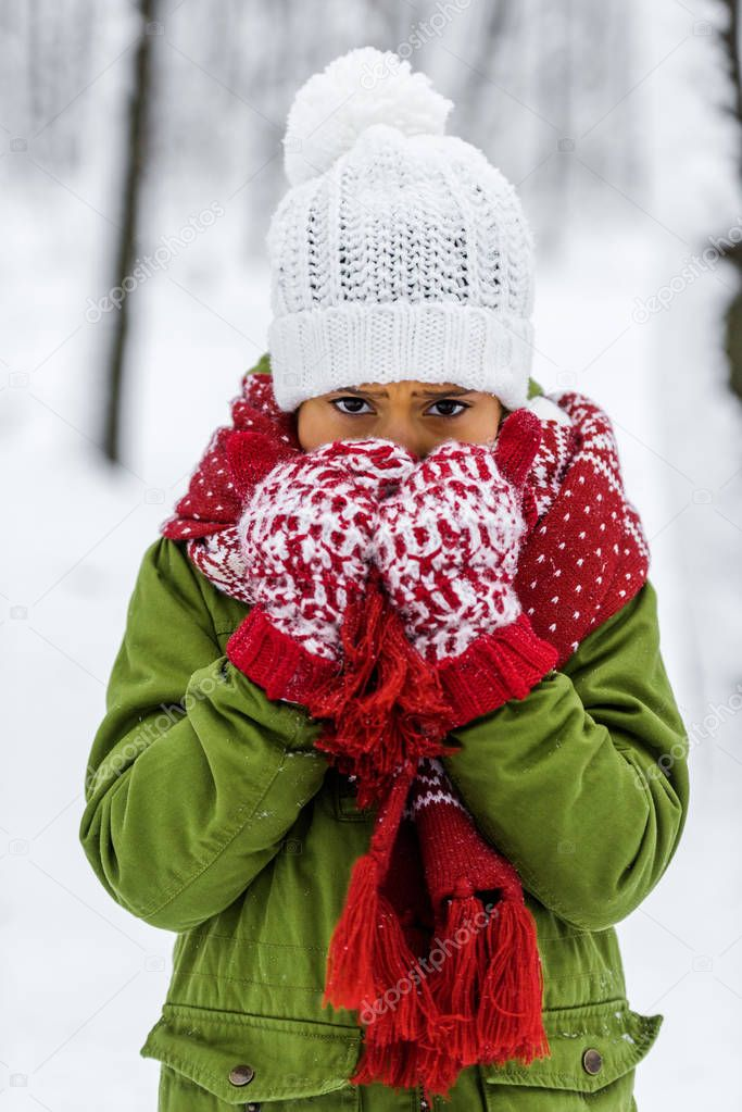 frozen african american child in knitted hat, mittens and scarf looking at camera in winter park
