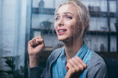 sad adult woman crying with clenched fists at home through window with raindrops