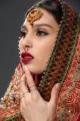 Fényképek indiai szépség pózol a hagyományos Sári és bindi, elszigetelt szürke