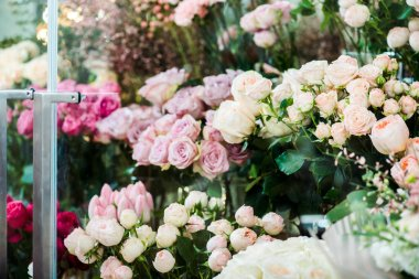 variety of colorful fresh flowers in flower shop