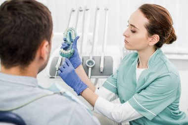 selective focus of beautiful dentist holding teeth model and toothbrush near patient