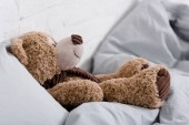 Photo Brown teddy bear lying on grey blanket in room