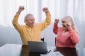 gerne älteres Paar in bunten Kleidern mit Laptop und jubeln mit am Tisch sitzen die Hände in Luft