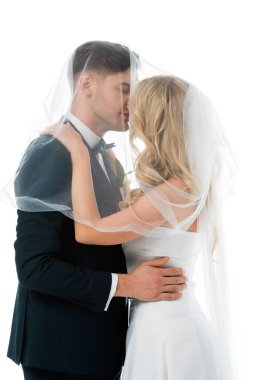 Bride kissing groom while covering him with bridal veil isolated on white stock vector
