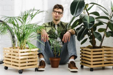 man in green shirt and glasses sitting near pots with plants and brick wall in office