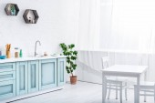 interior of light spacious white and turquoise kitchen with green plant