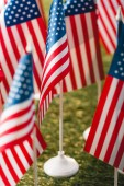selective focus of american flags with stars and stripes on grass