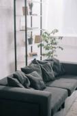 Fotografia divano nero vicino alla pianta e cremagliera in salone moderno