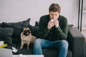 szép ember allergiás a kutya, aki a szövet közelében aranyos mopszli otthon tüsszentés közben