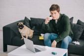 szép ember allergiás a gazdaság szövet, és ül a kanapé közelében mopsz kutya