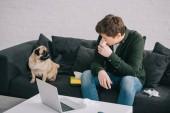 Mann reagiert allergisch auf Hund, der Gewebe in Nasennähe hält und Mops auf Sofa ansieht