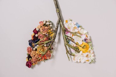 top view of of floral composition with dried and blooming flowers near twigs in shape of lungs on grey