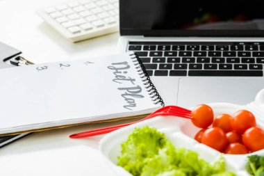 organic vegetables near notebook with diet plan lettering and laptop