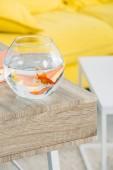 szelektív hangsúly akvárium arany hal a fából készült asztal