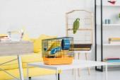 Fotografia soggiorno con gabbia di PET arancione sul tavolo bianco, e pappagallo verde in gabbia per uccelli