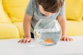 entzückender neugieriger Junge schaut in Aquarium mit Goldfischen