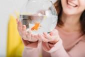 részleges kilátás a vidám nő, aki hal tál fényes arany hal