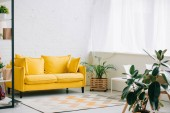 Photo spacious living room with yellow sofa, carpet on floor and plants in flowerpots