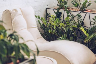 selective focus of soft white chaise lounge and pouf surrounded by lush green plants