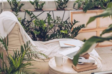 selective focus of laptop, headphones and coffee cup on pouf near soft chaise lounge surrounded by green plants