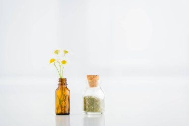 Corked jar with dried herbs near glass bottle with chamomile flowers on white background with copy space stock vector