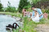 Fotografie Selektiver Fokus des niedlichen Kindes in Kleid und Strohhut, das in der Nähe von glücklichem Vater und See mit schwarzen Schwänen sitzt