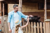 Photo bearded man and cute daughter touching donkey while standing in zoo