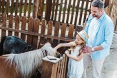 cheerful kid touching pony while standing near father in zoo